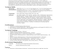 sle professional resume template best ideas ofe sles for system administrator position