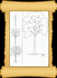 learn to draw trees android apps on google play