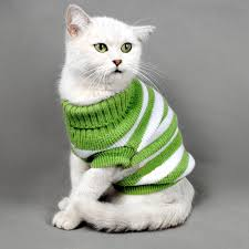 sweaters for cats knitted pet clothes striped cats sweater aran pullover