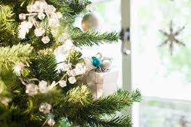 how to keep your christmas tree fresh all season