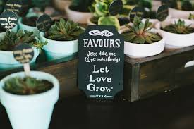 plant wedding favors potted succulent favors