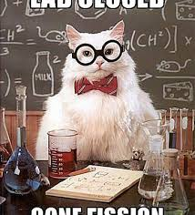 Chemistry Jokes Meme - best of chemistry cat science meme