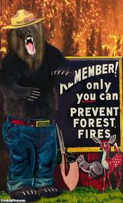 How Many Wildfires In Canada by Did Smokey The Bear Cause The Canadian Wildfires U2013 Homeland