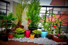 how to transform your balcony into a lovely garden