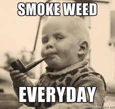 Smoke Weed Meme - image 288760 smoke weed everyday know your meme
