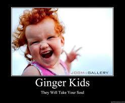Ginger Snap Meme - pin by mandy coon on amanda markowski pinterest amanda