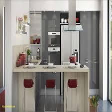 facade meuble cuisine castorama le impressionnant avec intéressant meuble cuisine castorama pour