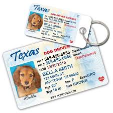 Winter Garden Drivers License Pet Supplies Texas Driver License Custom Dog Tags For Pets 2