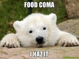 Food Coma Meme - food coma i haz it make a meme
