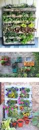 best 25 pallets garden ideas on pinterest pallet gardening