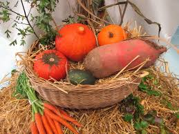 free photo thanksgiving vegetables fruits free image on
