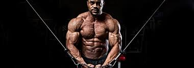 how to build a massive chest in just 8 weeks isatori nutritional