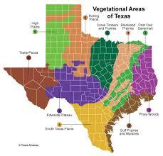 Texas vegetaion images Texas plant life texas almanac jpg