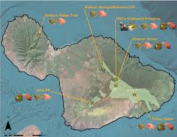 Maui Hawaii Map Maui Forest Bird Recovery Project Birding On Maui Map