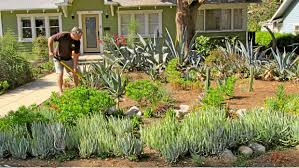 Drought Friendly Landscaping by Experts Offer Advice For Drought Tolerant Landscaping In Southern
