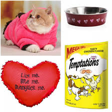 valentines presents s day presents for your cat heartland soul