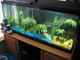 How To Clean Fish Tank Decorations Blue Fish Tank Dector Ideas Pictures Of Fish Tank Decoration