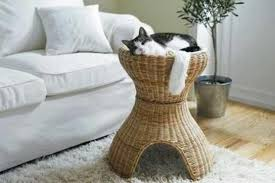 luxurious pet cat home interior furniture ideas about pet life