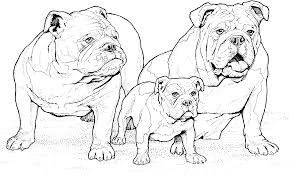 printable 30 realistic dog coloring pages 4610 realistic dog