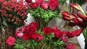 local flower shops local flower shops prepare for s day wbrc fox6 news