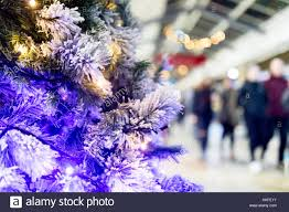 twinkle lights stock photos twinkle lights stock images alamy