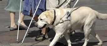 National Federation Of Blind Nfb Of Pa U2013 National Federation Of The Blind Of Pennsylvania