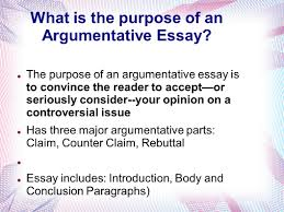 pharmacy admission essay samples admission essay writing service get the best essay writing introduction to an argumentative essay example reportz web karnataka shabarimale