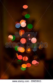 out of focus multi colored lights on a tree make up