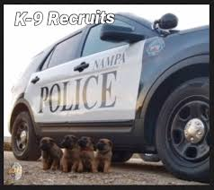 nampa police department home facebook