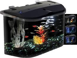 amazon com api panaview aquarium kit with led lighting and power