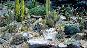 Garden Ideas With Rocks Zen Rock Garden Ideas Hydraz Club