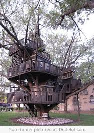 tree house st louis park mn tiny houses spaces