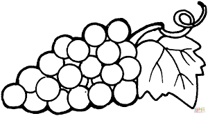grapes coloring page grapes coloring pages free coloring pages