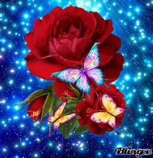 roses n butterflies picture 129842581 blingee com