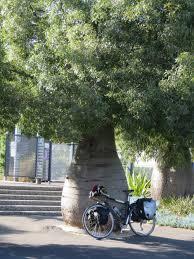 Geelong Botanic Gardens by My Blog
