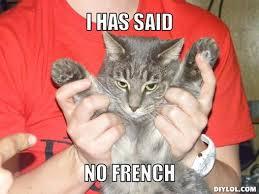 No Meme Generator - mad cat meme generator image memes at relatably com