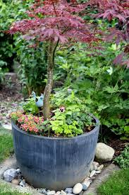 270 best beautiful containers images on pinterest gardening