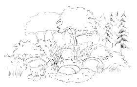 design process of blue ridge ecosystems u2014 blue ridge ecosystems inc