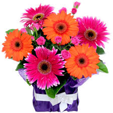 order flowers online cheap hospital florists gold coast send flowers gold coast hospital