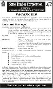 sri lankan government job vacancies at state timber corporation