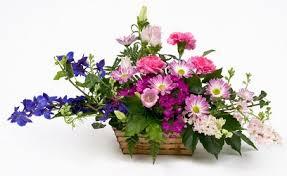 florist tulsa ok tulsa florists flowers in tulsa ok southpark florist
