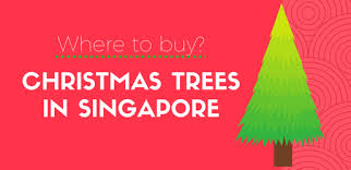 beyond ikea where to buy real and artificial christmas trees in