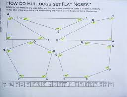 how do bulldogs get flat noses pizazz ws u2022 events oxford academy