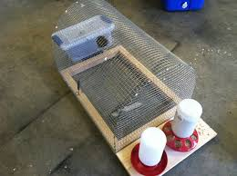 backyard quail coop build a mobile quail home it easy to move
