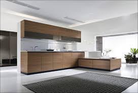 Ikea Kitchen Cabinets Sizes by Kitchen Ikea Kitchen Cabinet Sizes Shaker Kitchen Cabinets Ikea