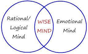 wise mind worksheet worksheets