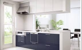 kitchen stunning kitchen cabinets knob door knobs cabinetkitchen