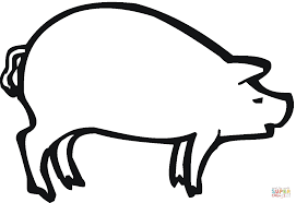pig sow coloring page free printable coloring pages