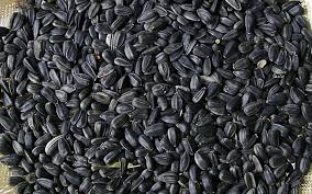 black sunflower seeds 1kg