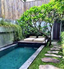 homelife everything you need to know about tropical garden design